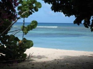 BEACH | YOGA + DIVING TOBAGO | Yoga Holidays, Adventures & Retreats with Wenche Beard